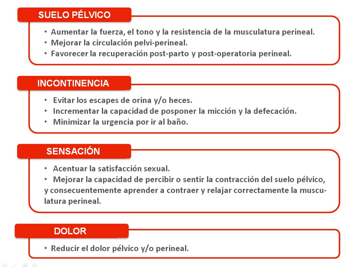 Electroestimulaci n perineal fisioterapia de la mujer for Clausula suelo desde cuando se aplica